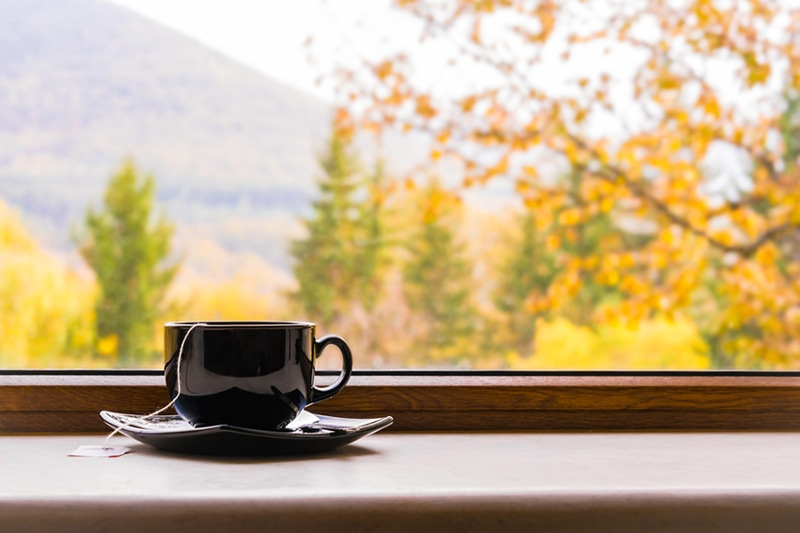 Fall humidifiers indoor air quality